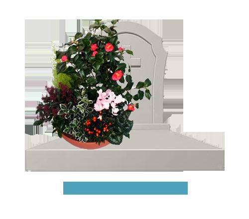 SepulClean Fleurissement